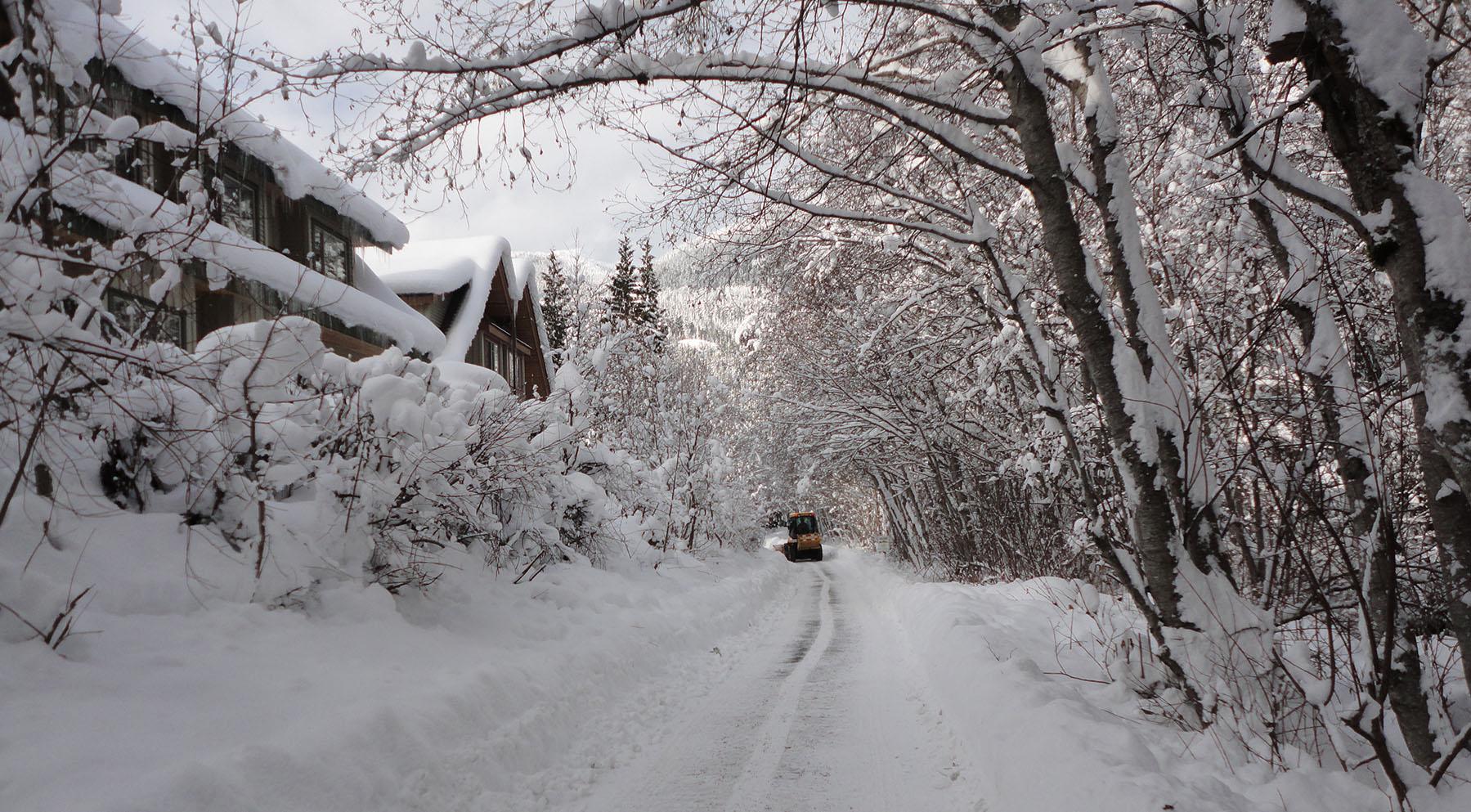 Whistler Creak Side Winter